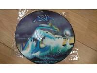 Vinyl asia