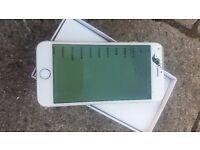 Iphone 6 gold n white
