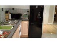Samsung large black fridge freezer