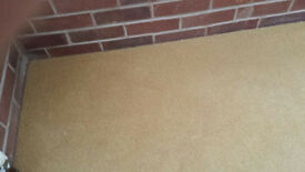 Beige Wool Carpet + Underlay