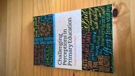 Challenging Perceptions in Primary Education: Exploring Issues in Practice - Paperback