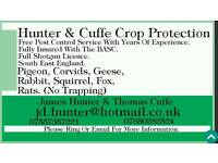 Free Pest Control Service