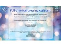 Full-time hairdressing Assistant required.