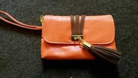 Dorothy perkins small clutch bag