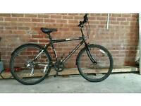 Challenge crusade bike