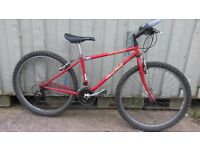 Specialized Hardrock Retro Classic Mountain Bike Tange Campagnolo S-Works Red Ideal For Small Adult