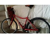 Bike £20