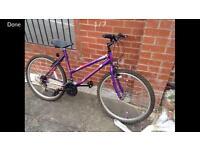 Ladies frame mountain bike