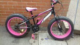 sonicbulk bike