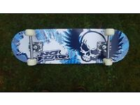 Skateboard (no fear)
