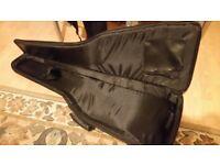 Fender padded bag