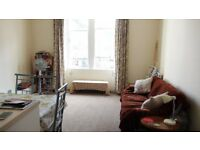 Short term Christmas New Year let central spacious 1 bedroom flat at Meadows George Square Newington