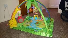 Baby rainforest playmat