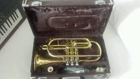 Yamaha YCR2330 cornet