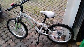 """Gils mountain bike apollo moonstone 20 """""""