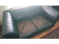 Dark green leather sofas