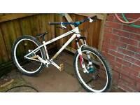 Specialised P1 jump bike
