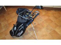 lightweight titleist stand golf bag