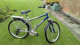 Adult Giant Bicycle