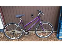 ladies mountain bike 19 inch frame
