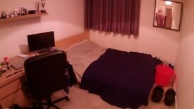 1 double bedroom in a 3 bedroom flat (Firpark Court) - Available January - May/June