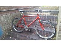 Sarecen mountain bike bicycle 18 speed