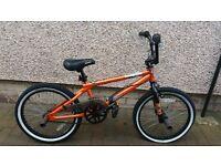 Boys stunt bike