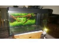 110L fish tank aquarium