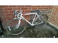 Bike Racer Releigh