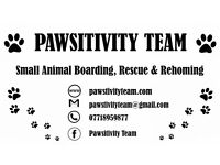 Small Animal Boarding, Rescue & Rehoming