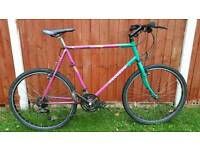 Cheap Adult Mountain Bike in Good Condition