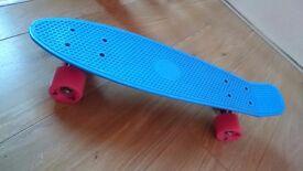 Cruiser penny board skateboard