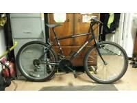"16"" townsend bike"