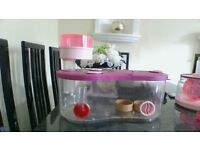 pink hamster cage (plastic) £20 full set up