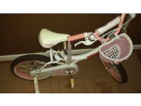 Royalbaby Jenny Princess Pink Girl's Bike with Training Wheels and Basket 14""