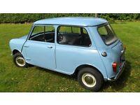 Classic Mini MK1 or MK2 wanted