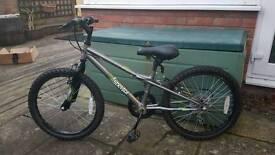 Boys Apolllo Spektor Bike