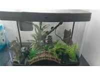 Love Fish Panorama 64 litre aquarium