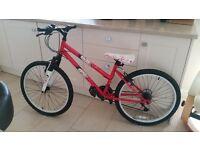 "Girls Mountain Bike 24"" wheel"