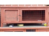 2x rabbits and hutches for sale