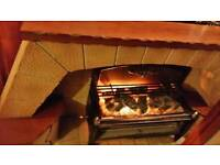 Electric gas fire