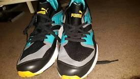Puma blades
