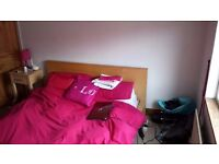 DOUBLE ROOM in female 4 bedroom house share Kirkstall - great location LS53JQ - low deposit