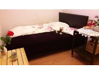 Avail NOW, Zone2, garden, Female, Great LOCATION