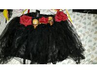Dead of Dead Accessories - Halloween/dress up