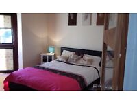 Very spacious double room to share in beautiful 4 level town house