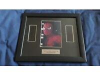 Spiderman 2 genuine framed double film cell
