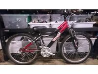 "Triumph Daytona 24"" wheel boys or girls hardtail mountain bike"