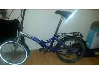 Reflex Bike