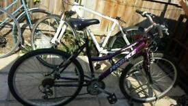 Ladys mountain bike 26 inch wheels adult or teenager